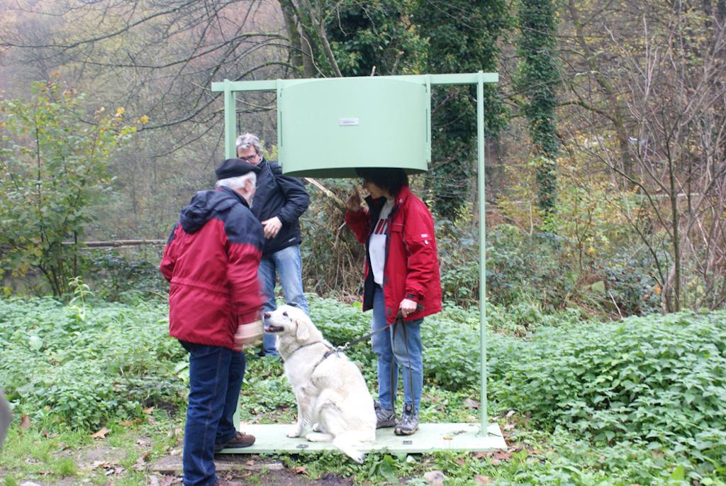 1000wassertal_regenhoertonne-mit-horchendem-hund